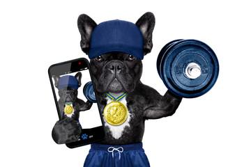 dog sport selfie