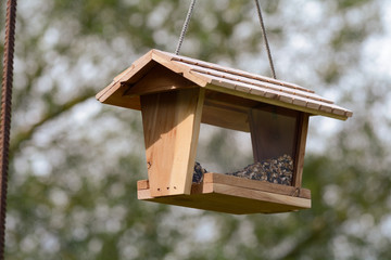 Wooden bird house and feeder