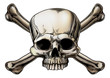 Skull and crossbones drawing