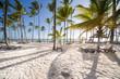 Leinwanddruck Bild - Caribbean Beach