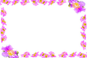 Purple flowers branches frame isolated on white background