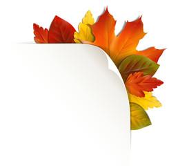 Papierecke mit bunten Herbstblättern