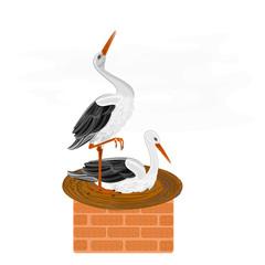 Storks and nest on a brick chimney vector illustration