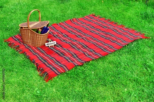 Picnic blanket and basket on the lawn - 69048783