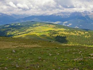Almwiesen auf der Lüsner Alm, Südtirol