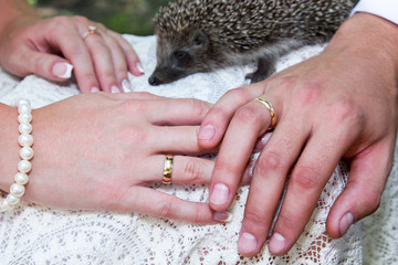Brides and groom hands