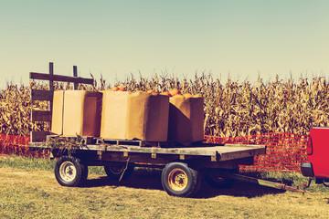 Pumpkins on treiler