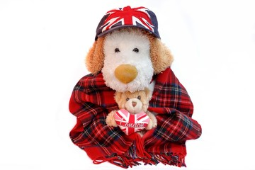 Old Dog Englishman and teddy bear with London Love Heart