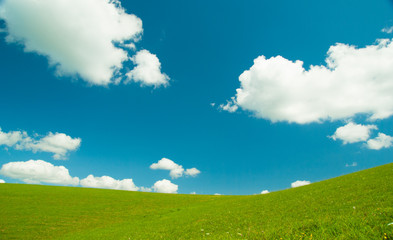 Green field and blue sky with light white clouds