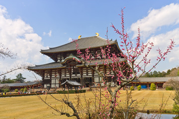 Todaiji temple, Nara, Japan. UNESCO site