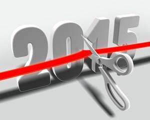 2015_cut