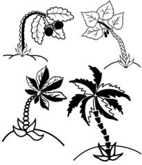 Palm trees collectionŒ