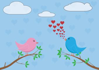 Love birds - singing love song