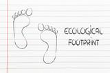 ecological footprint, ecotourism and environmental awareness poster