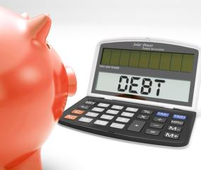 Debt Calculator Shows Credit Arrears Or Liabilities