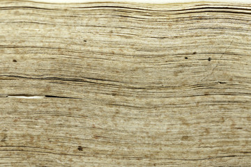 old book texture leaves