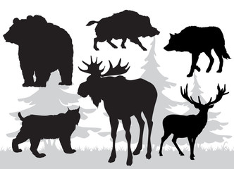 animals of the taiga vector