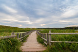 A wooden bridge over a marsh in the Cavendish Dunelands poster