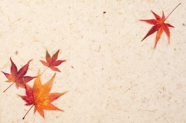 紅葉と和紙