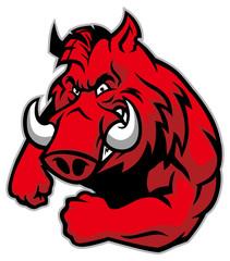 razorback mascot