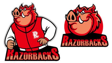 razorback school mascot