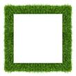 fresh frame incl. clipping path