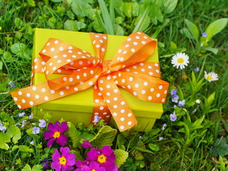 present lawn