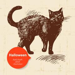 Halloween hand drawn illustration