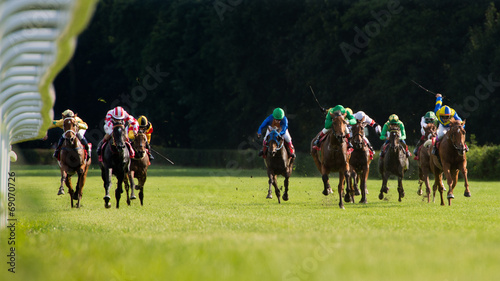 Fotobehang Paardrijden Horse race in a Racecourse Partynice, Poland.