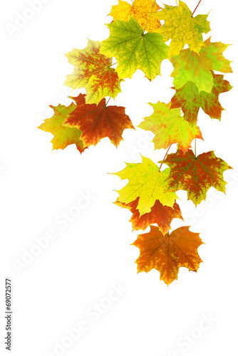 canvas print picture Herbst 40