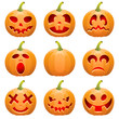 Collect Pumpkin for Halloween