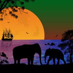 Elephants in beautiful seascape