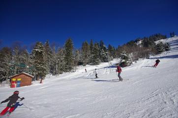 domaine skiable de saint pierre de chartreuse