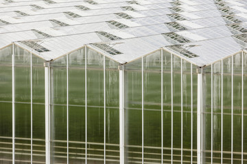 Large Greenhouse From Outside