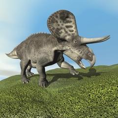 Zuniceratops dinosaur - 3D render