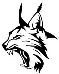 lynx head