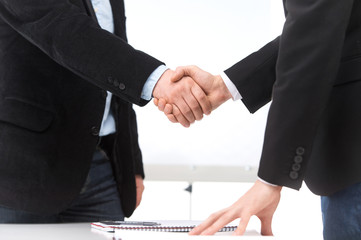Business people shaking hands in office.