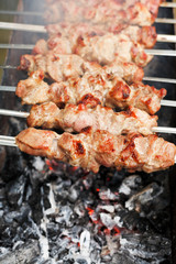 skewers with meat shish kebabs over burning coal