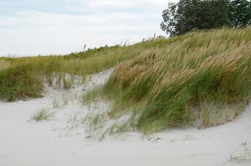 Ostseestrand - Dünen