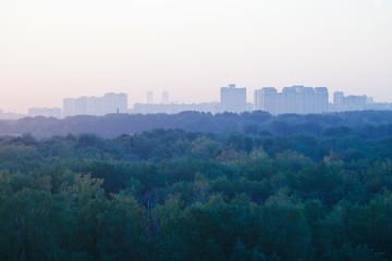 light blue early sunrise over urban houses and park