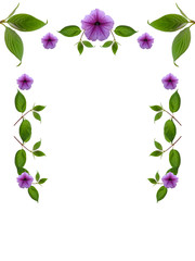 floral frame on white background
