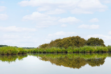 landscape of Briere Marsh in summer day, France