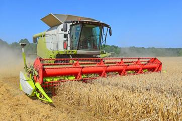 Grain harvesting combine