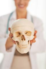Closeup on doctor woman showing human skull