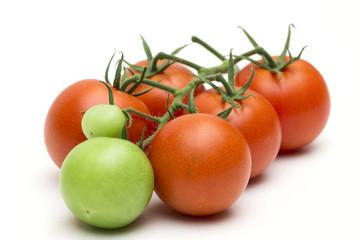 tomato on the white background