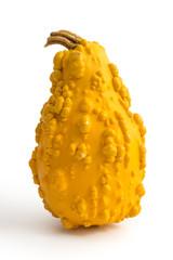 Gelber Zierkürbis