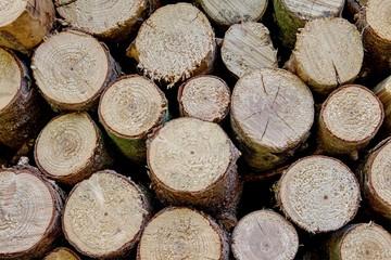 Blockwoods