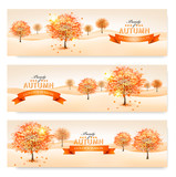 Fototapety Autumn background with colorful leaves and trees.Vector illustra