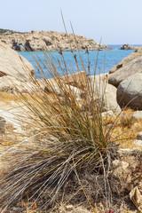 insenatura di mare tra le rocce