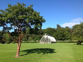 arboretum in a summer park